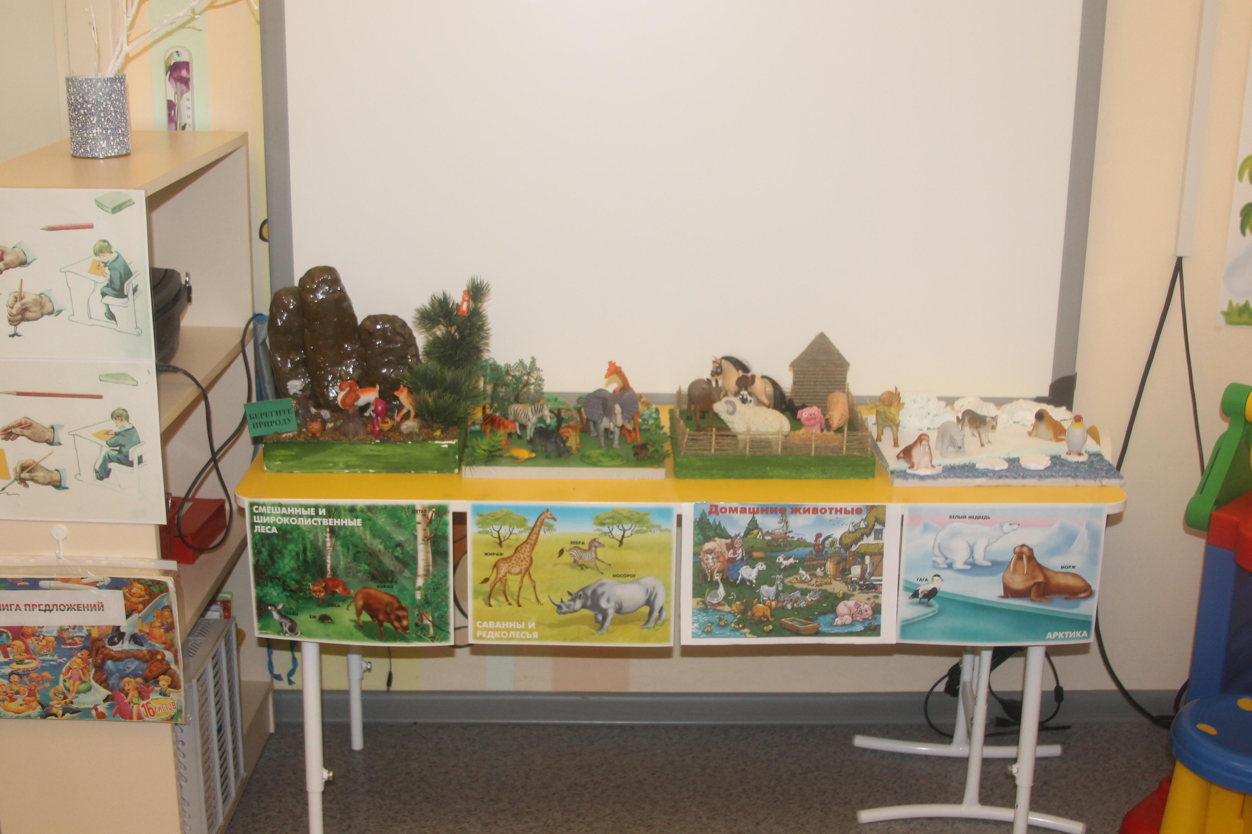 Макеты по экологии в детском саду своими руками 58